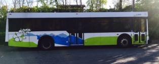 City Bus 2 2016